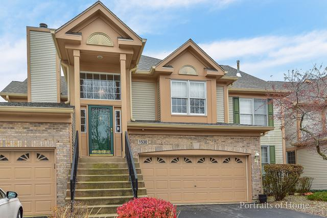 1530 Orchard Circle, Naperville, IL 60565 (MLS #09803888) :: The Wexler Group at Keller Williams Preferred Realty