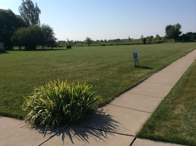 000 Thoroughbred Lane, Plainfield, IL 60544 (MLS #09803900) :: Carrington Real Estate Services