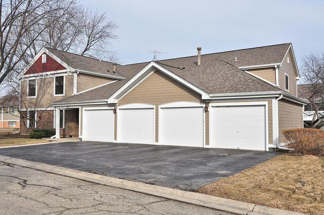 321 Maplewood Lane B1, Schaumburg, IL 60193 (MLS #09804089) :: Carrington Real Estate Services