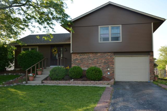 8160 W Norwood Drive, Frankfort, IL 60423 (MLS #09804161) :: The Wexler Group at Keller Williams Preferred Realty