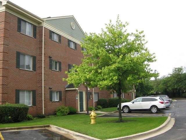1528 N River West Court 2B, Mount Prospect, IL 60056 (MLS #09804162) :: Helen Oliveri Real Estate
