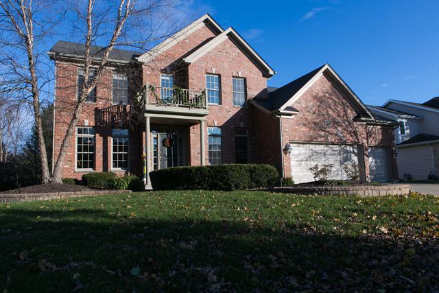 16011 Hometown Drive, Plainfield, IL 60586 (MLS #09804373) :: The Dena Furlow Team - Keller Williams Realty