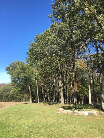 5171 Reservation Road, Oswego, IL 60543 (MLS #09804497) :: The Dena Furlow Team - Keller Williams Realty