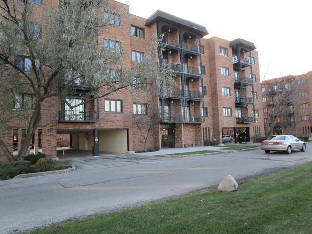 9355 Landings Lane 201B, Des Plaines, IL 60016 (MLS #09804761) :: Helen Oliveri Real Estate