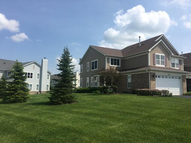361 Mcgrath Drive #361, Oswego, IL 60543 (MLS #09804770) :: The Dena Furlow Team - Keller Williams Realty