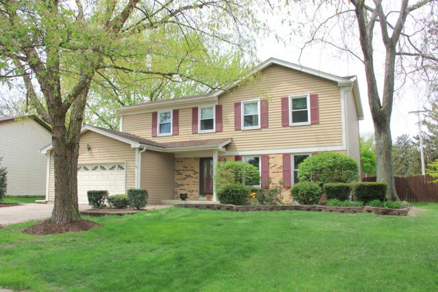 75 Cottonwood Circle, Batavia, IL 60510 (MLS #09804775) :: The Dena Furlow Team - Keller Williams Realty