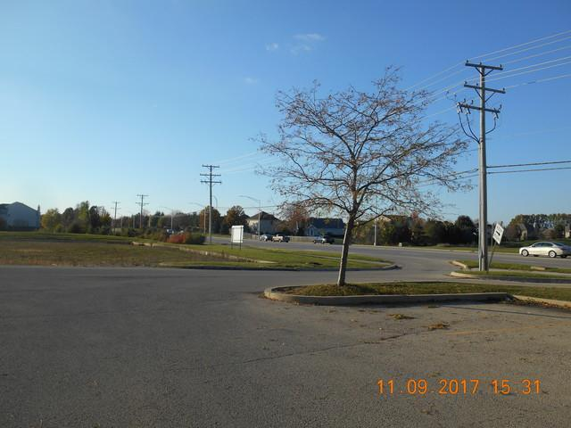 2313 S Drauden Road, Plainfield, IL 60586 (MLS #09804784) :: The Dena Furlow Team - Keller Williams Realty