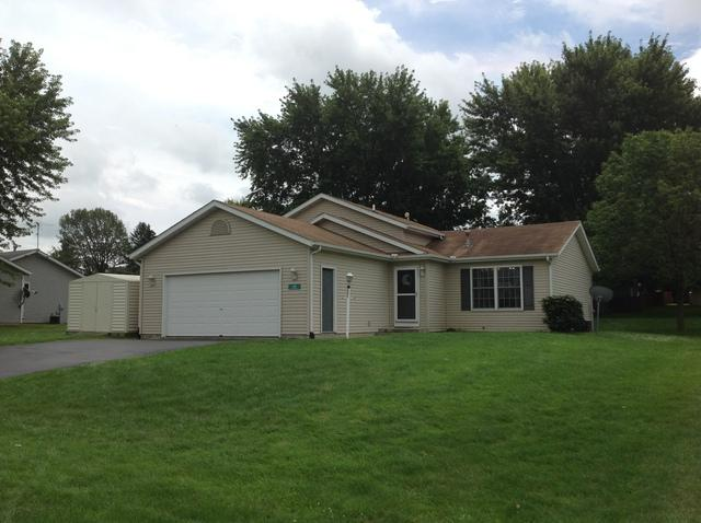 301 Meadow Drive, Orangeville, IL 61060 (MLS #09804831) :: Property Consultants Realty