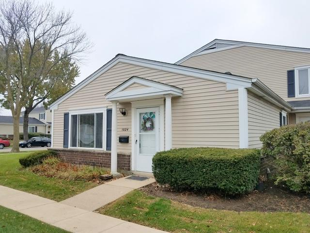 1024 Cove Drive 146A, Prospect Heights, IL 60070 (MLS #09804904) :: The Dena Furlow Team - Keller Williams Realty