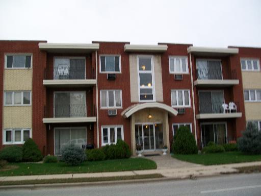 10035 S Cicero Avenue #303, Oak Lawn, IL 60453 (MLS #09804912) :: The Dena Furlow Team - Keller Williams Realty