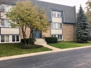 2105 Ammer Ridge Court #302, Glenview, IL 60025 (MLS #09804932) :: Helen Oliveri Real Estate