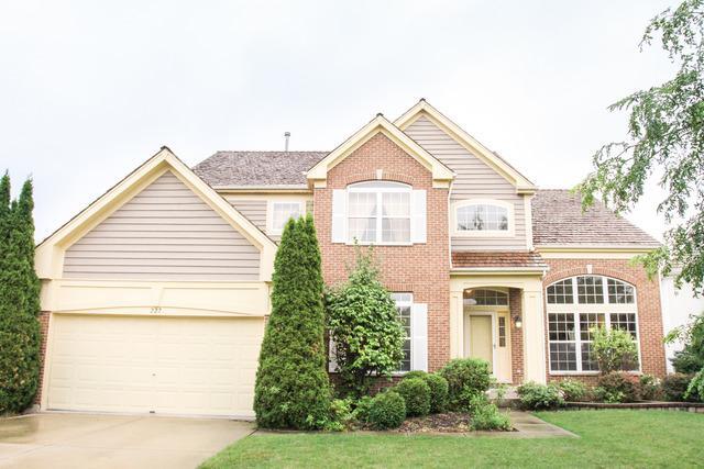 227 W Wellington Drive, Palatine, IL 60067 (MLS #09805005) :: Helen Oliveri Real Estate