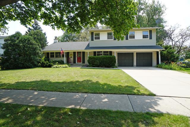 159 S Arlene Avenue, Palatine, IL 60074 (MLS #09805609) :: Helen Oliveri Real Estate