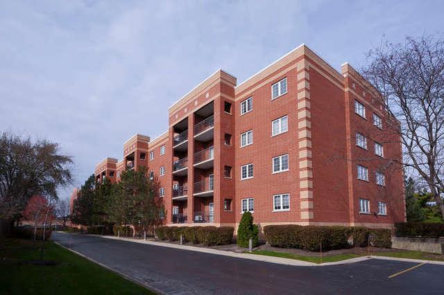 59 S Hale Street #306, Palatine, IL 60067 (MLS #09805844) :: Helen Oliveri Real Estate