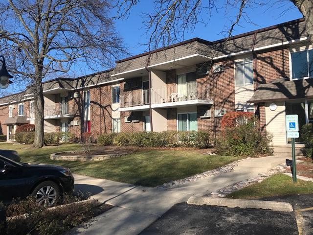 972 Thornton Ln Unit#206 Lane #206, Buffalo Grove, IL 60089 (MLS #09805934) :: Helen Oliveri Real Estate