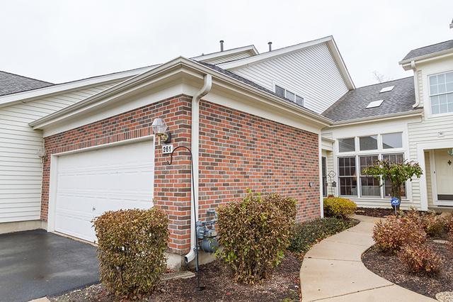 261 Bridlewood Court, Schaumburg, IL 60173 (MLS #09806139) :: MKT Properties | Keller Williams