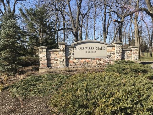 21101 W Summerfield Court, Kildeer, IL 60047 (MLS #09806314) :: Helen Oliveri Real Estate