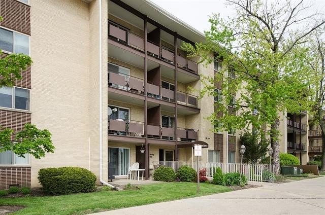650 Murray Lane #414, Des Plaines, IL 60016 (MLS #09806386) :: Helen Oliveri Real Estate