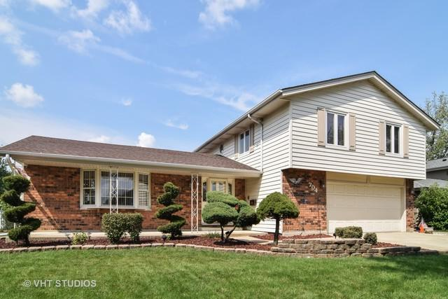 704 Kemah Lane, Schaumburg, IL 60193 (MLS #09807577) :: Helen Oliveri Real Estate