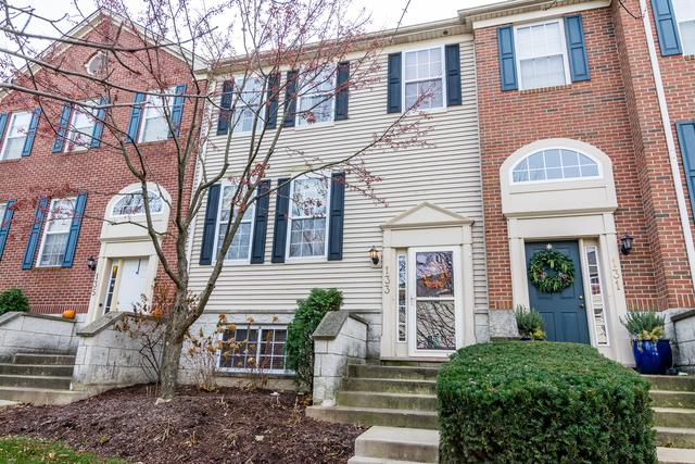 133 Patrick Avenue #133, Willow Springs, IL 60480 (MLS #09808957) :: The Wexler Group at Keller Williams Preferred Realty