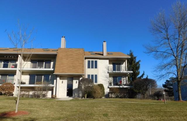 9086 Del Prado Drive 2E, Palos Hills, IL 60465 (MLS #09811343) :: The Wexler Group at Keller Williams Preferred Realty