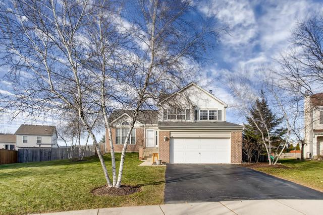 2 Bosi Court, Bolingbrook, IL 60490 (MLS #09813246) :: The Wexler Group at Keller Williams Preferred Realty