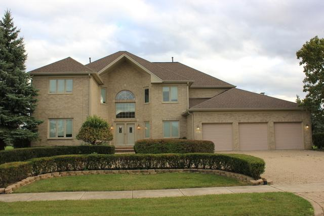 19 Odyssey Drive, Tinley Park, IL 60477 (MLS #09813980) :: The Wexler Group at Keller Williams Preferred Realty