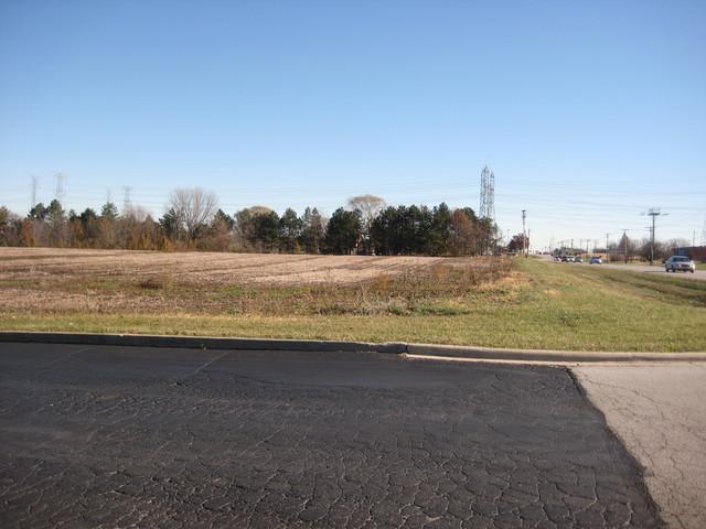 13150 W 143RD Street, Homer Glen, IL 60491 (MLS #09814160) :: The Wexler Group at Keller Williams Preferred Realty