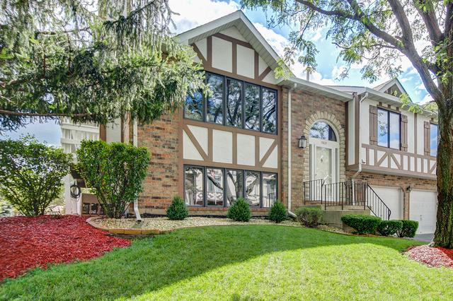 17621 Drummond Drive #141, Tinley Park, IL 60487 (MLS #09814461) :: The Wexler Group at Keller Williams Preferred Realty
