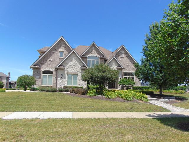 20130 Alison Trail, Mokena, IL 60448 (MLS #09814535) :: The Wexler Group at Keller Williams Preferred Realty