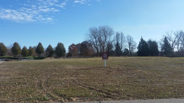 31 Wood Oaks Drive, South Barrington, IL 60010 (MLS #09814825) :: The Schwabe Group