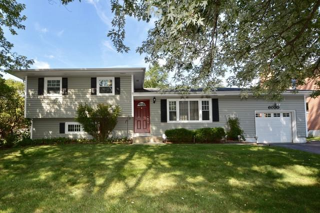 6030 Belmont Road, Downers Grove, IL 60516 (MLS #09815154) :: The Wexler Group at Keller Williams Preferred Realty