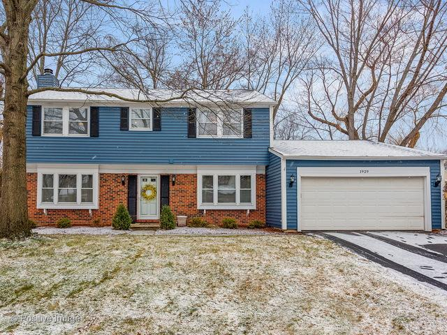 1929 Ridgefield Lane, Naperville, IL 60565 (MLS #09815208) :: The Wexler Group at Keller Williams Preferred Realty