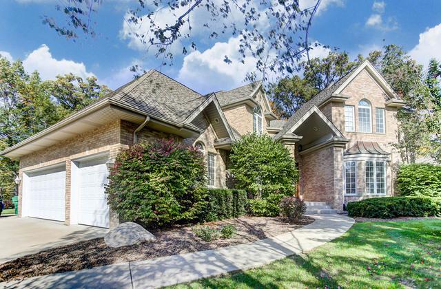 16141 Wildwood Lane, Homer Glen, IL 60491 (MLS #09815739) :: Baz Realty Network | Keller Williams Preferred Realty