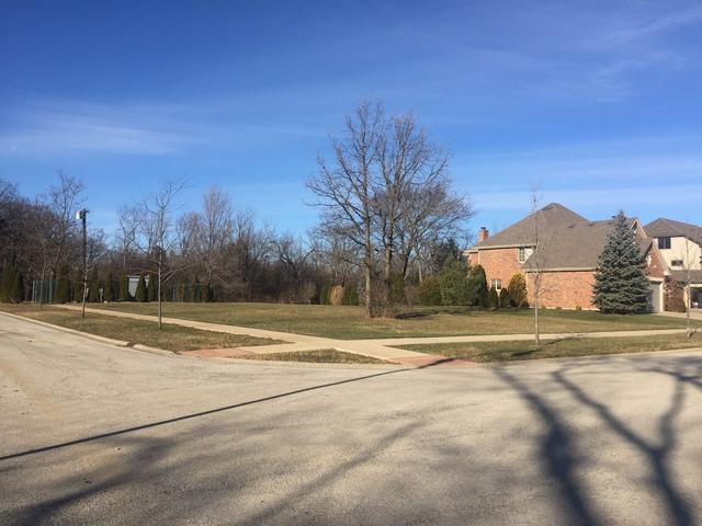 15966 Crystal Creek Drive, Homer Glen, IL 60491 (MLS #09816673) :: Baz Realty Network | Keller Williams Preferred Realty