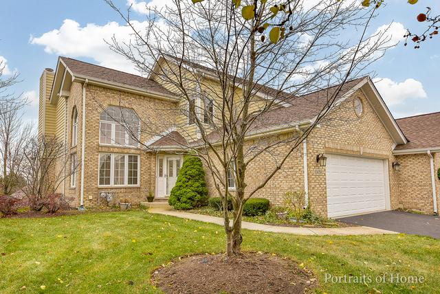 10439 Songbird Circle, Orland Park, IL 60467 (MLS #09817155) :: Baz Realty Network | Keller Williams Preferred Realty
