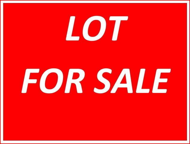 15705 Brookshore Drive, Plainfield, IL 60544 (MLS #09817215) :: The Dena Furlow Team - Keller Williams Realty