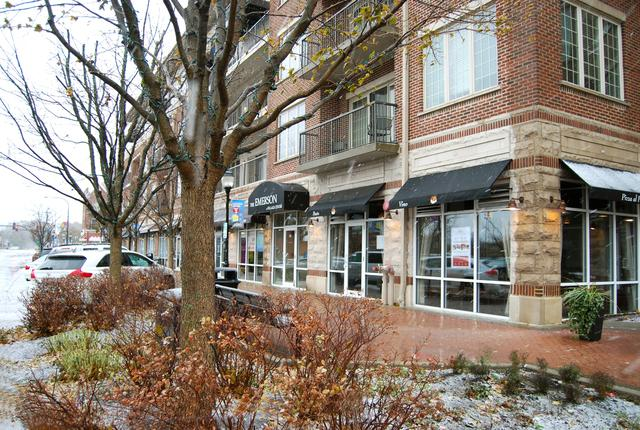 100 S Emerson Street #515, Mount Prospect, IL 60056 (MLS #09817237) :: The Schwabe Group