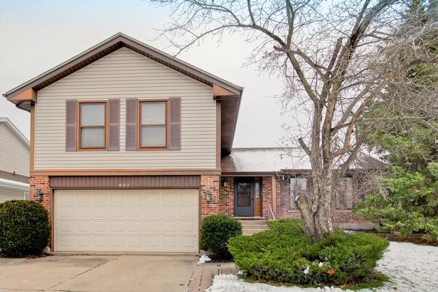 325 Ronnie Drive, Buffalo Grove, IL 60089 (MLS #09817654) :: The Schwabe Group