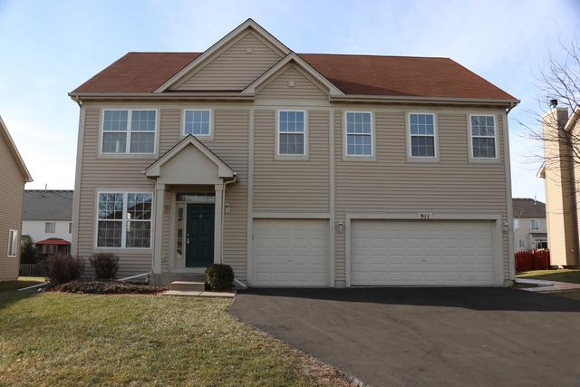 911 Salvia Lane, Joliet, IL 60431 (MLS #09817834) :: Angie Faron with RE/MAX Ultimate Professionals
