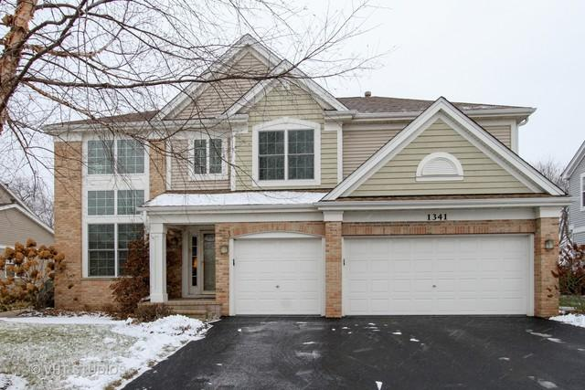1341 Mulberry Lane, Cary, IL 60013 (MLS #09817986) :: Key Realty
