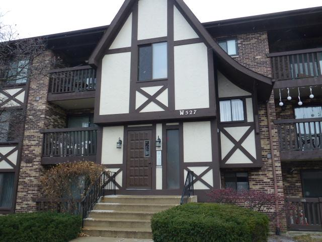 527 Cumnor Road #103, Westmont, IL 60559 (MLS #09818256) :: Domain Realty