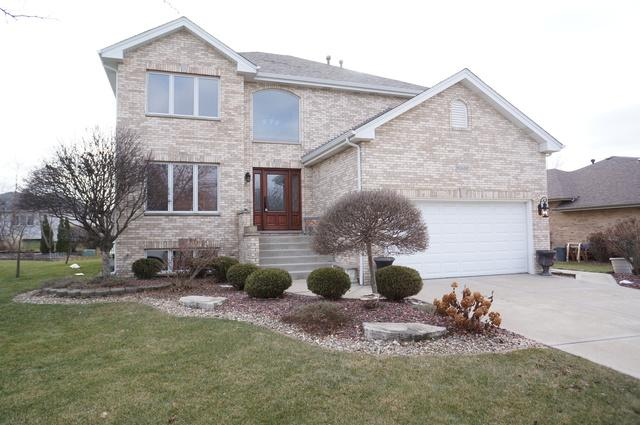 10449 Venice Lane, Orland Park, IL 60467 (MLS #09818737) :: The Ryan Dallas Team