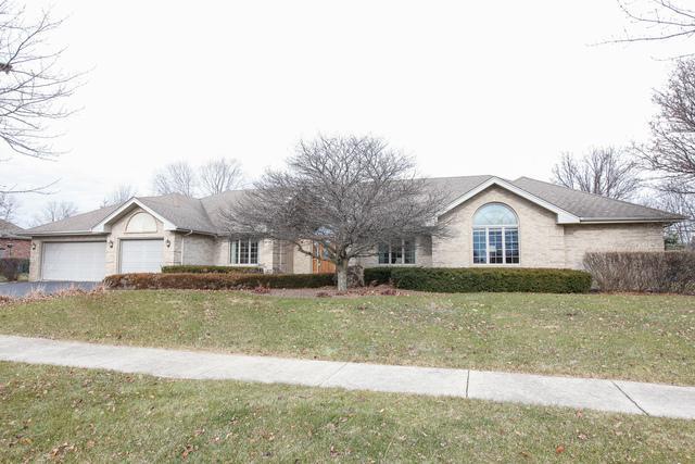 12252 Thorn Apple Drive, Homer Glen, IL 60491 (MLS #09818980) :: House Hunters Team