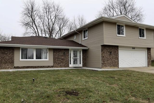 313 Andrew Lane, Schaumburg, IL 60193 (MLS #09818984) :: House Hunters Team