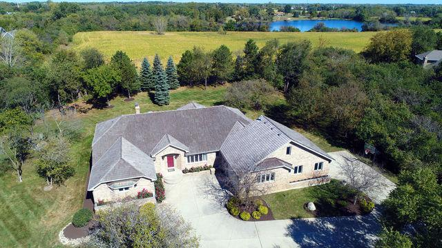3 Condor Court, Hawthorn Woods, IL 60047 (MLS #09819949) :: Helen Oliveri Real Estate