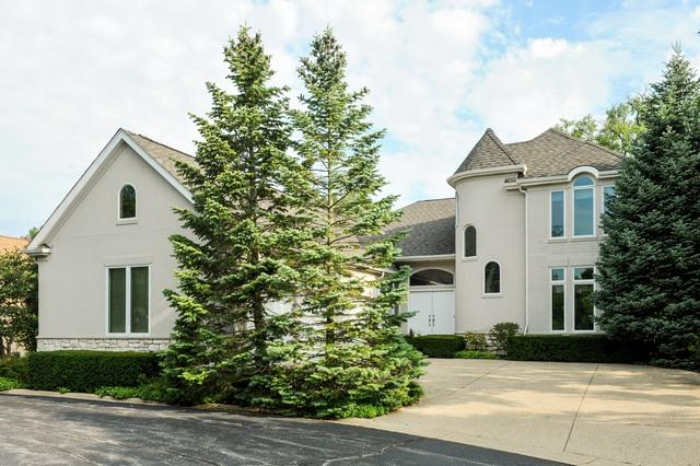 2532 Augusta Way, Highland Park, IL 60035 (MLS #09820314) :: Domain Realty