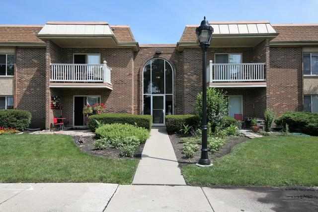 902 W Alleghany Drive 1B, Arlington Heights, IL 60004 (MLS #09823731) :: Lewke Partners