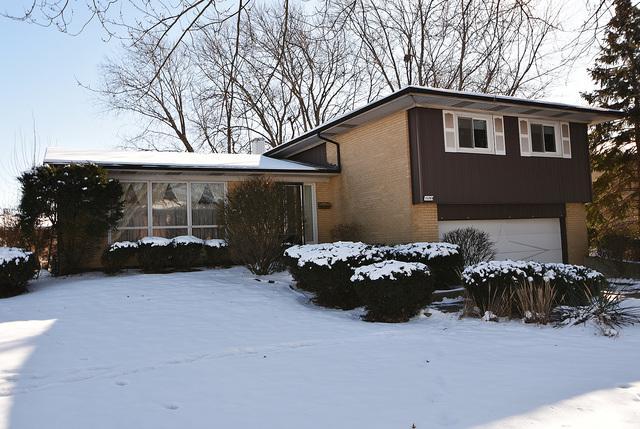 15269 Pine Drive, Oak Forest, IL 60452 (MLS #09825375) :: Baz Realty Network | Keller Williams Preferred Realty