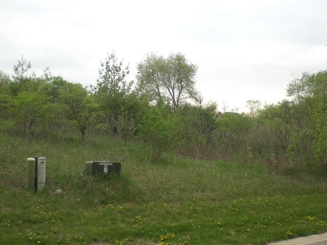 3305 Arbor Lane, Prairie Grove, IL 60012 (MLS #09825449) :: Lewke Partners